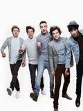 The rest of One Direction (Niall Horan, Zayn Malik, Liam Payne, Louis Tomlinson)